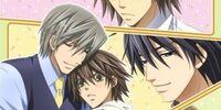 Junjō Romantica (Anime)