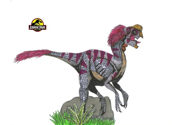 File:Jurassic Park Oviraptor by hellraptor.jpg