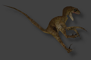 Female velociraptor from the TLW JP game