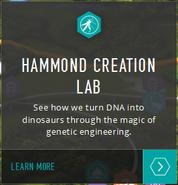 Hammond Lab map info