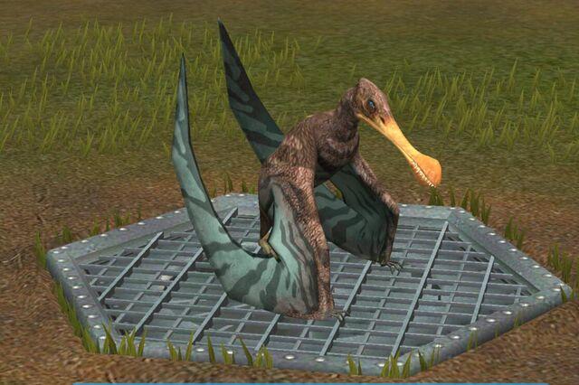 File:Tropeognathus (21).jpg