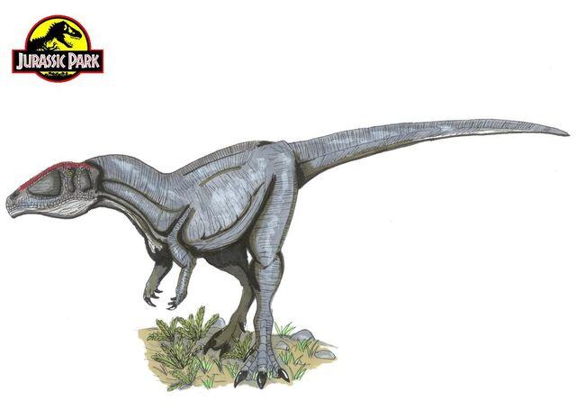 File:Jp Carcharodontosaurus by hellraptor.jpg