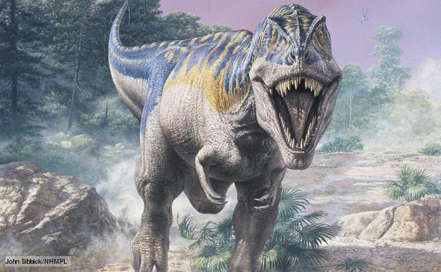 File:Tyrannosaurus 1.jpg