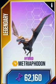 Metriaphodon-1.jpg