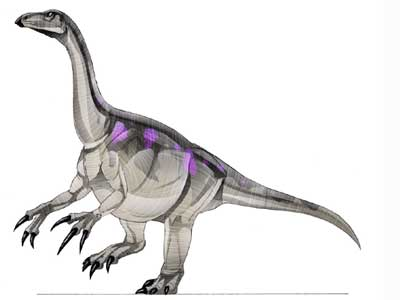 File:ErlikosaurusJPI.jpg