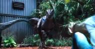 Raptor vs kid