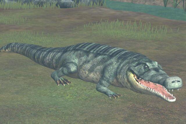 File:Sarcosuchus (38).jpg