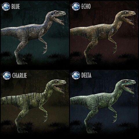 File:Raptor Pack.jpg