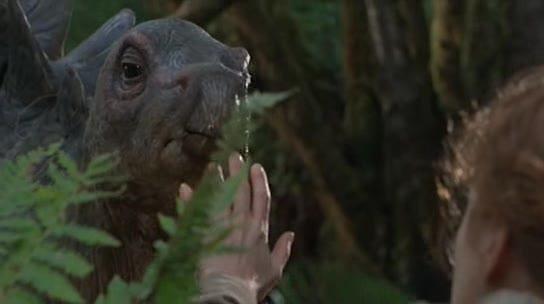 File:Stegosaur Baby.jpg