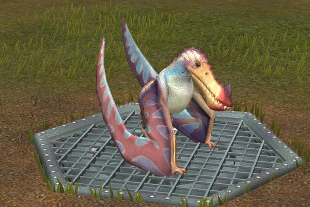 File:Limnorhynchus (1).jpg