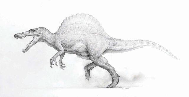 File:JP3 Sketch of Spinosaurus.jpg