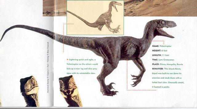 File:Velociraptorartgalery3.jpg