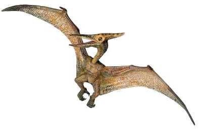 File:Pteranodon+-+55006+(1).jpg