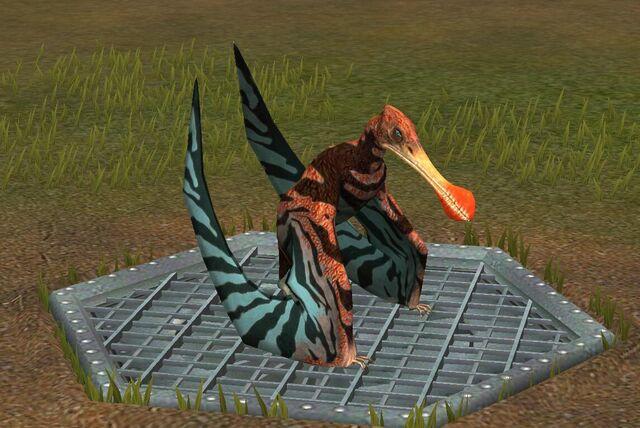File:Tropeognathus (22).jpg