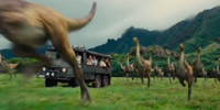 Gallimimus Valley