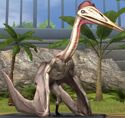 File:Hatzegopteryx lvl 10.jpg