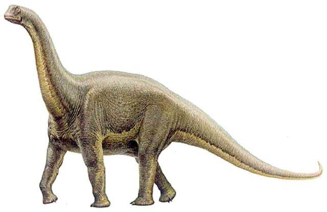 File:Alamosaurus1.jpg