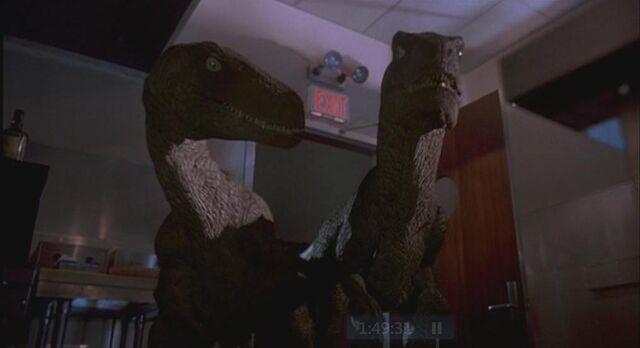 File:Velociraptor 3.JPG