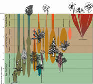 Evolucionpaleobotanic