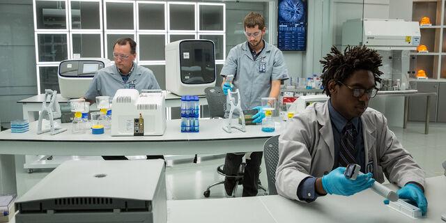 File:Creation-lab-employees-working.jpg