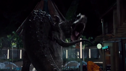 Raptor attack