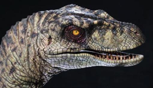 File:Velociraptor-jp2.jpg