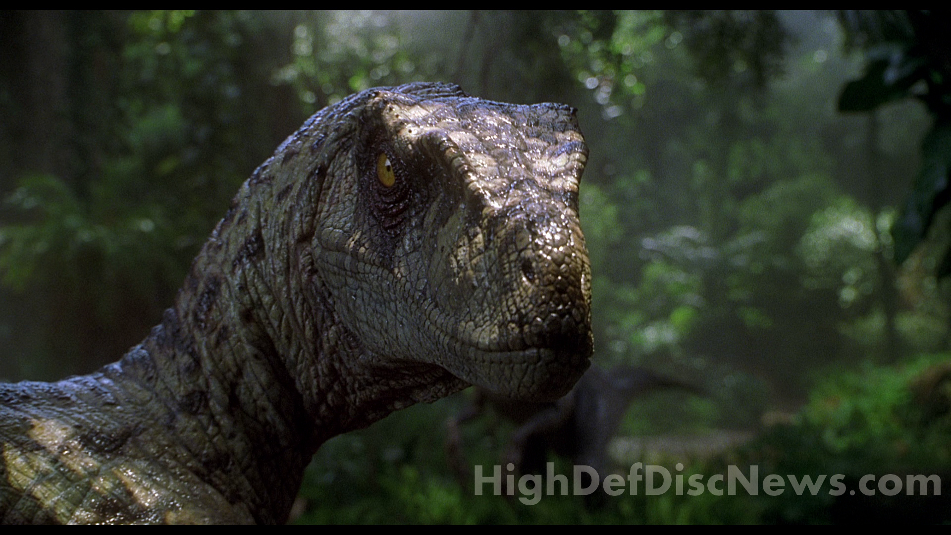 an analysis on jurassic park Two decades on and jurassic park has morphed into  stay informed and subscribe to our free daily newsletter and get the latest analysis and commentary.