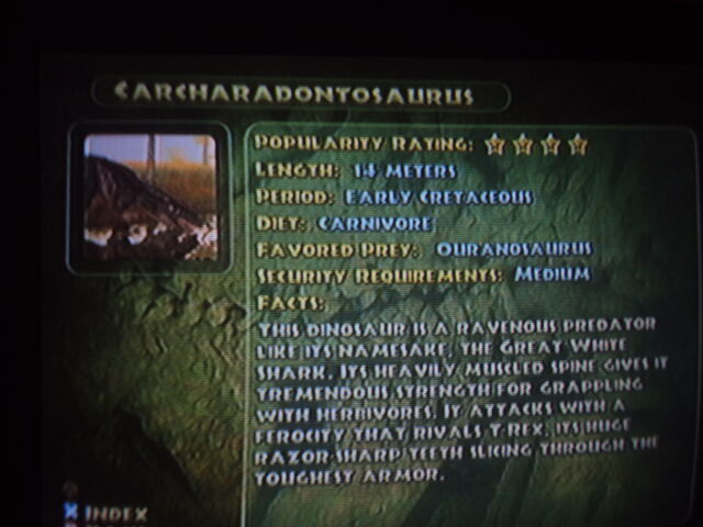 File:Carcharadontosaurus' info.JPG