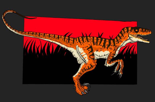 File:Jp velociraptor antirhopus nublariensis by hellraptor-d5zgayr.jpg
