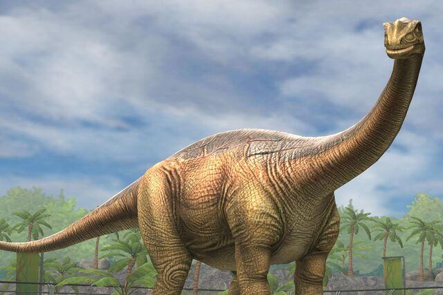 File:Shunosaurus Lii (31).jpg