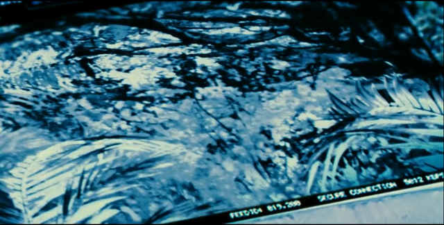 File:Indominus Rex (42).png