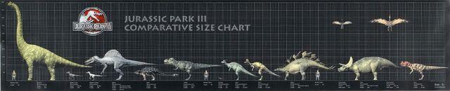 File:JP3 Size Chart.jpg