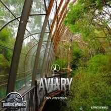JW-aviary-dome