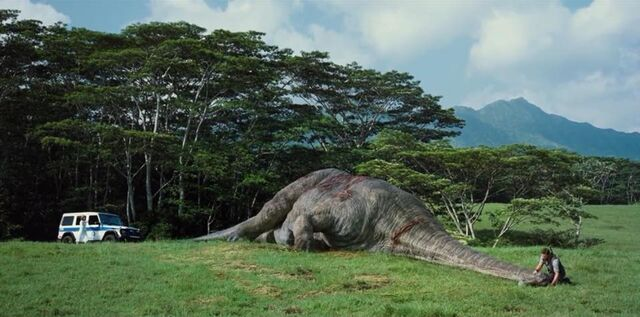 File:Dead Apatosaurus full body.jpg