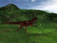 Allosaurus1-1-