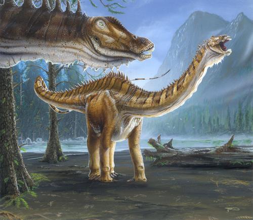 File:Diplodocus1.jpg