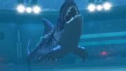 SharkJWTG