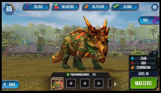 File:Pachyrhinosaurusmax.jpeg