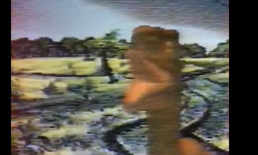 File:Screenshot of a Raptor in Jurassic Park for Sega CD.png