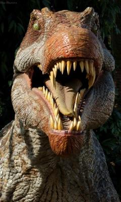 File:Spinosaurus6031wt0.jpg