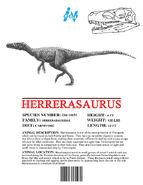 Ingen Dinosaur Info Sheets Herrerasaurus