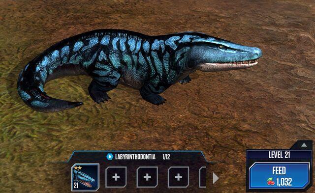 File:Labyrinthodontia 2S.jpg