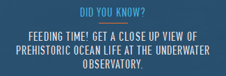 Файл:Did you know Underwater Observatory.png
