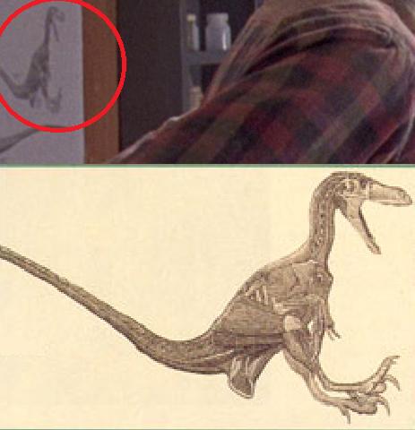 File:Realraptor.png