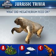 Megatherium Food Quiz