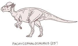 Pachycephalosaurus by PonchoFirewalker01.jpg