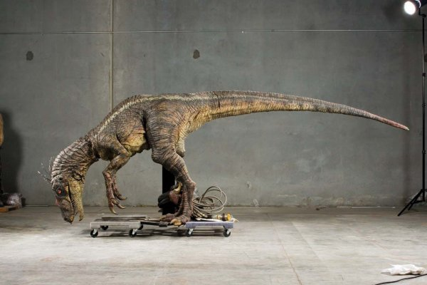 File:JP3 Raptor on Ebay. ($60,000).jpg