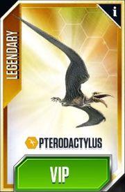 Pteradactylus-0