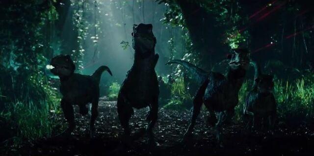 File:Raptors hunting.jpg