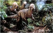 Pachycephalosaurus group.jpg